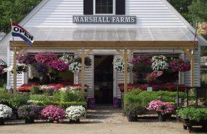 Hutchins Farms Archives Concord Ma